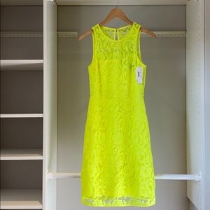 Neon + lace dress from J Crew